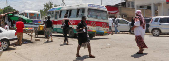 Third World Buses – First World Fear