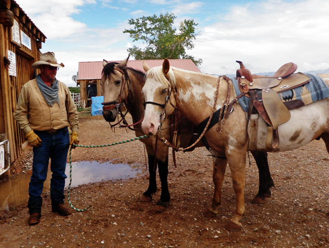 Cowboy_Bo